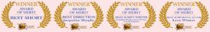 award-of-merit-high-res-mastertop4across-pink