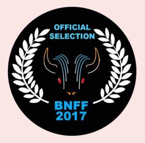 buffalo-logo-2017-pink
